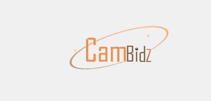 Online Bidding Website Customized Logo Design